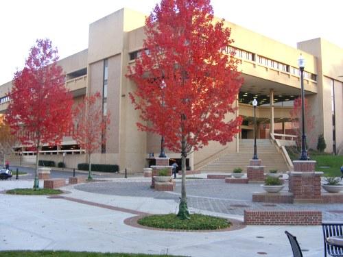 UTC Library