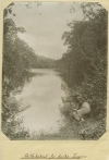 Duck shooting at Jungara, on Freshwater Creek, Cairns, ca. 1907